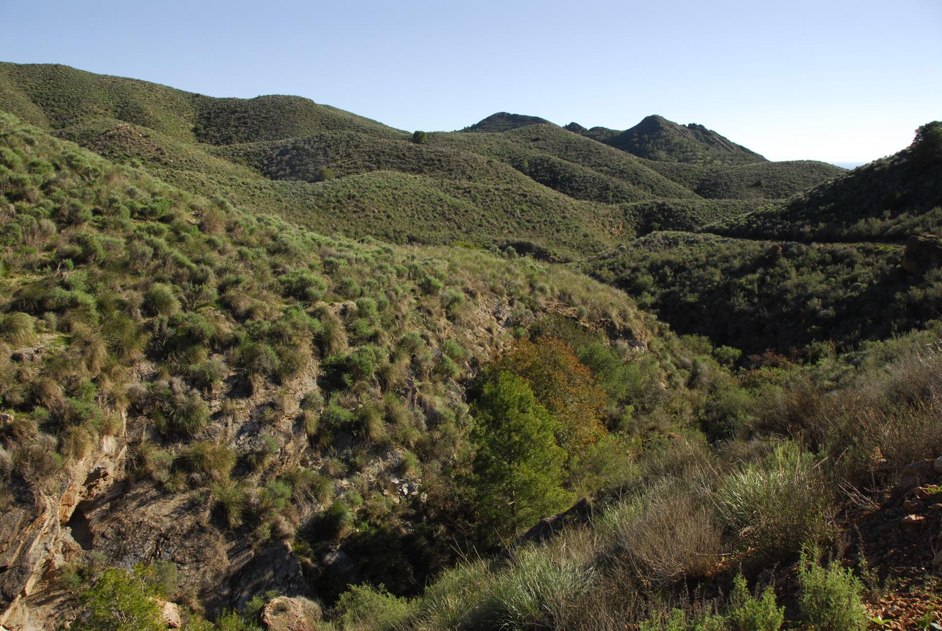 Reserva de Malcamino (Mazarrón). Foto ANSE